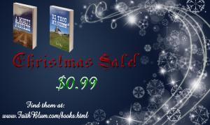 Christmas Sale Promos Blue 2