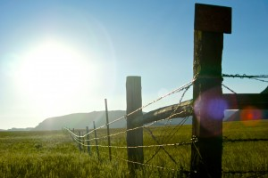 sunburst-over-barbed-wire