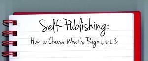 Sel-Publishing Post 4