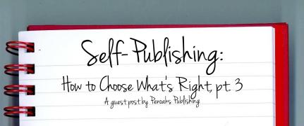 Sel-Publishing Post 5